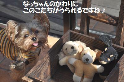DSC_0130_20111027223217.jpg
