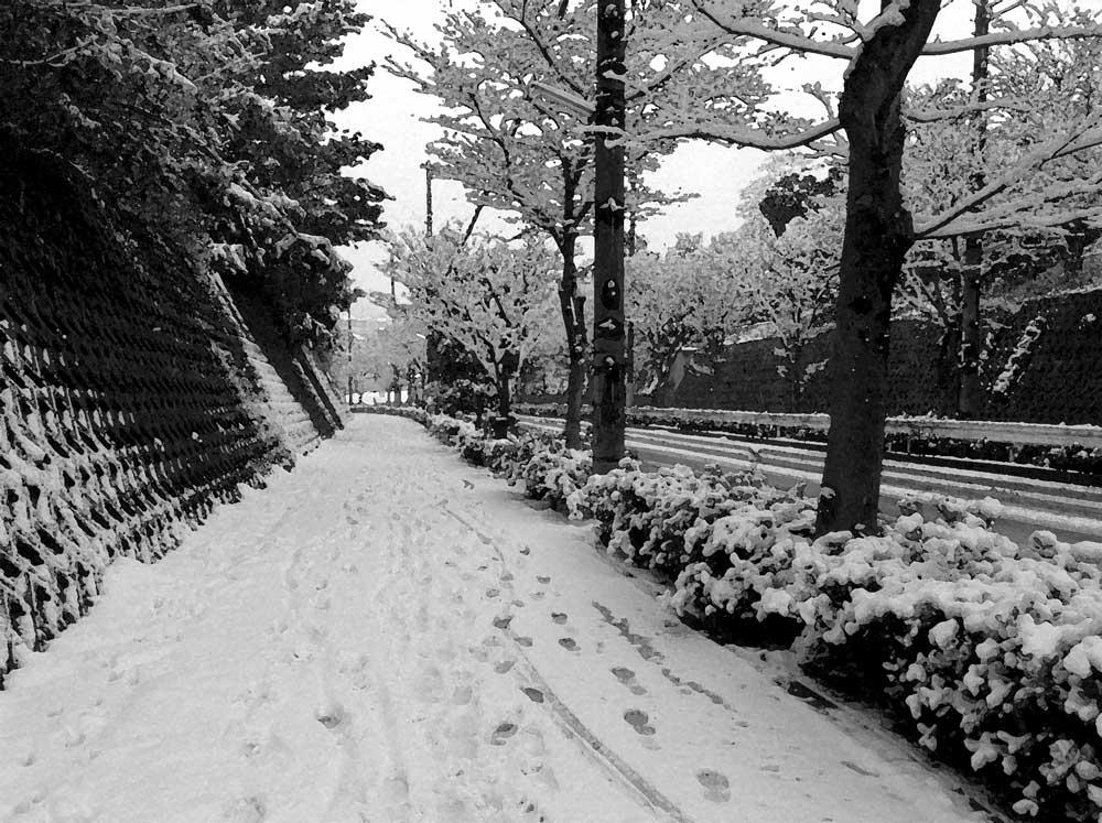 雪よ降れ降れ