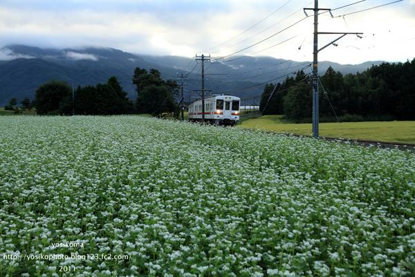 秋飯田線3