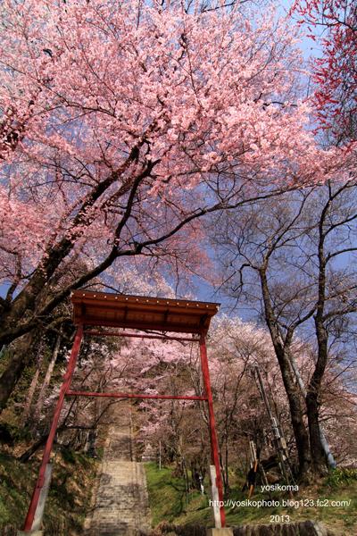 飯沼神社1