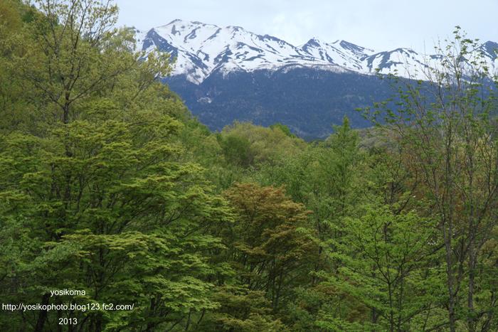 御岳と新緑