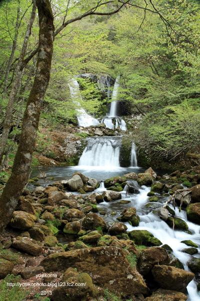 こもれびの滝1
