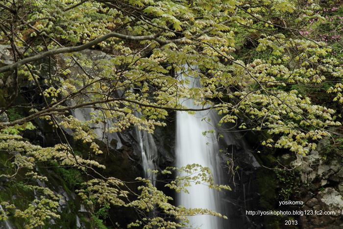 こもれびの滝3