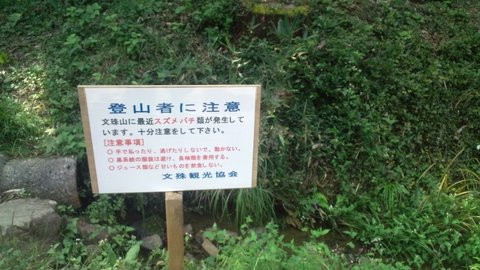 20111012120320.jpg