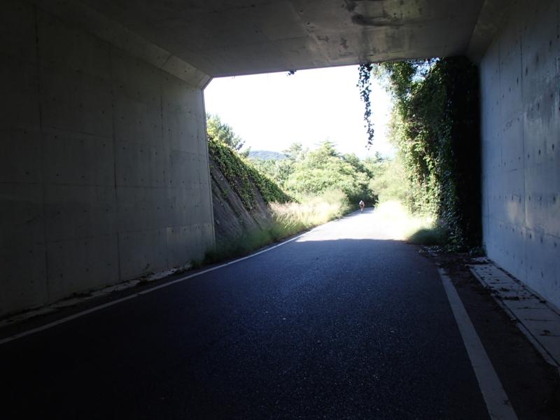 8cb048da.jpg