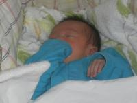H250414嬰児