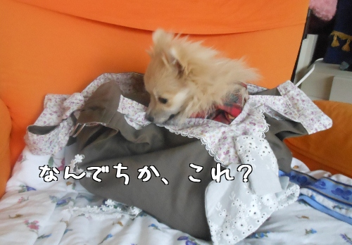 7_fEUbu6Yu9LUqA.jpg