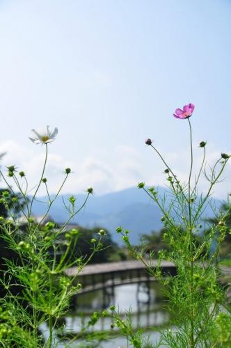 弓削神社14.09.28