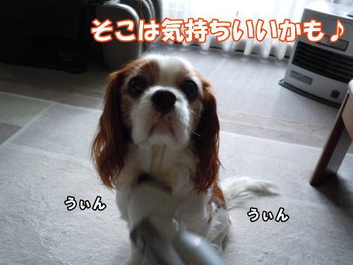 2012033003.jpg