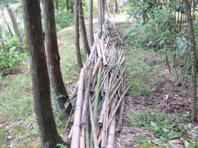 切り取った竹を積み上げた竹置き場