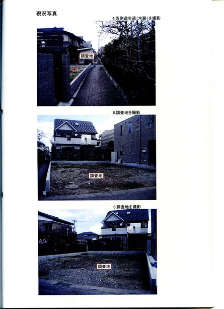photo_21601.jpg