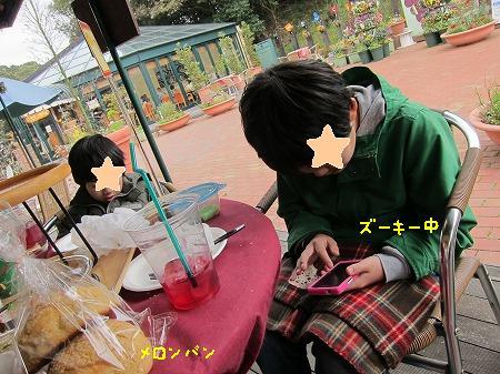 1IMG_5054.jpg