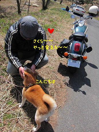 1IMG_5183.jpg