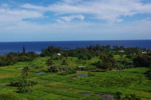 マウイ島の写真