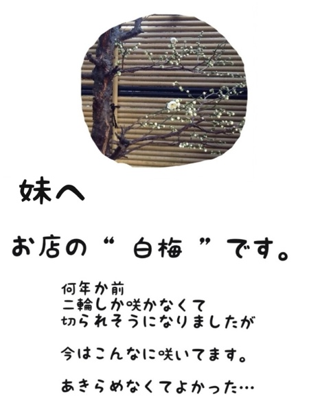 fc2blog_20130305175419f6a.jpg