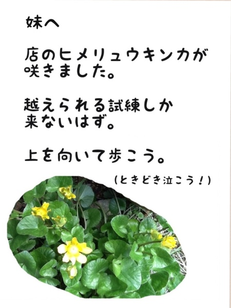 fc2blog_201303051808502e3.jpg