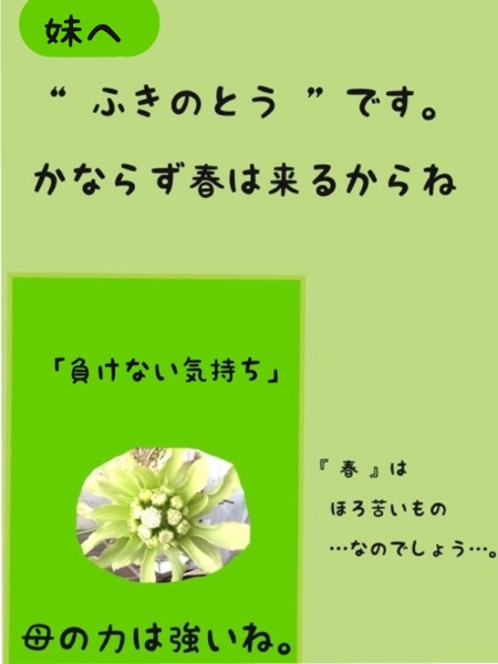 fc2blog_20130307173042519.jpg