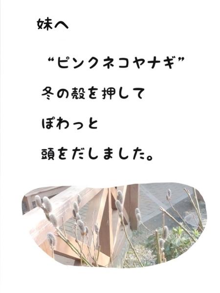 fc2blog_201303121729370c7.jpg