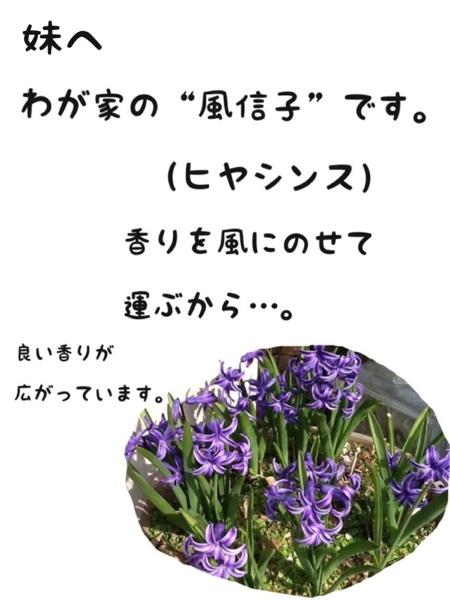 fc2blog_20130317180011cb7.jpg