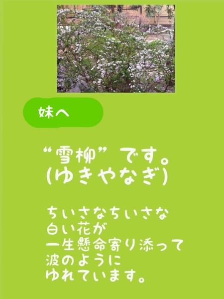 fc2blog_201303191757118ae.jpg