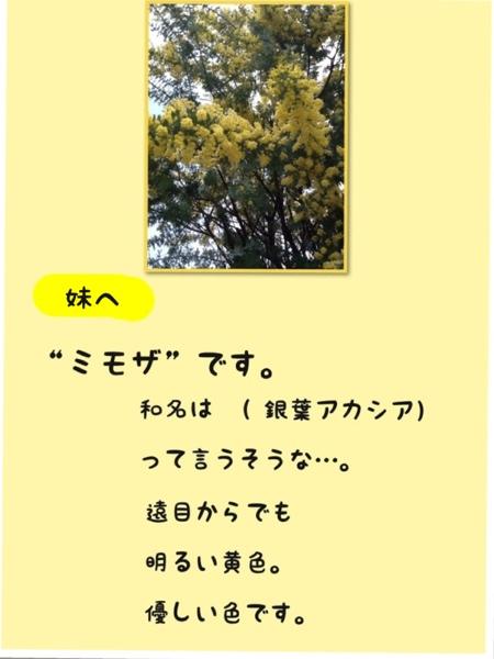 fc2blog_2013032618043867e.jpg