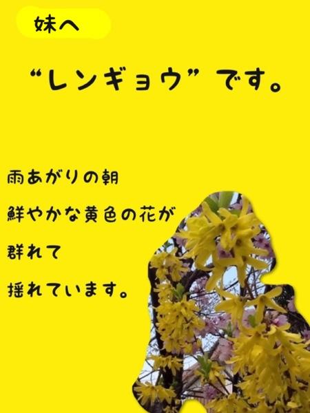 fc2blog_2013032817462079d.jpg