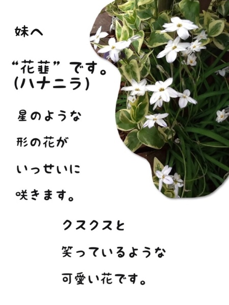 fc2blog_201303301913438c4.jpg