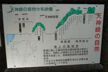 天神崎(案内図)