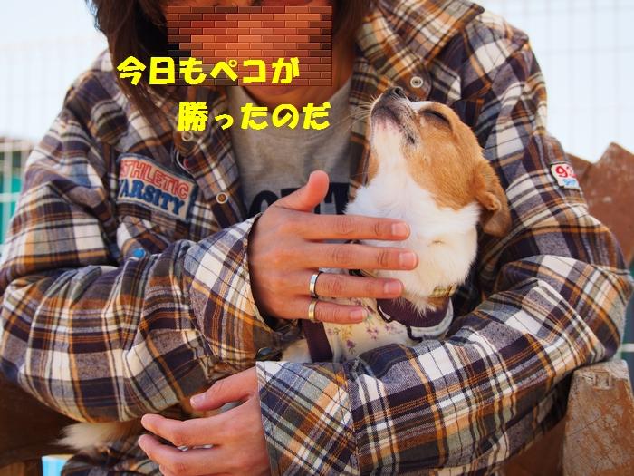 4_20130428224337.jpg