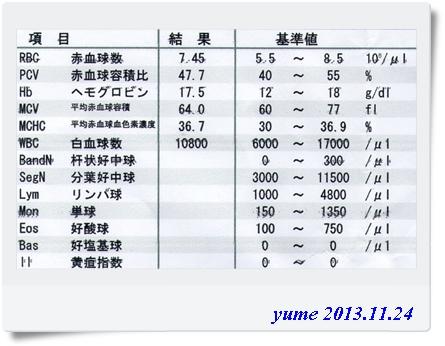 yume13-11-24.jpg