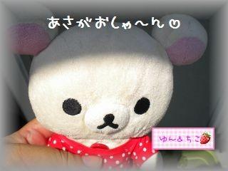 ちこちゃんのあさがお観察日記★19★種の赤ちゃん-1