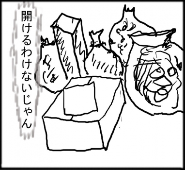 猫箱003