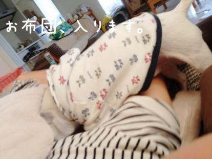 20111026_02.jpg