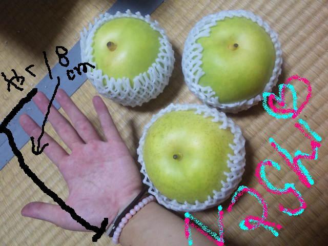 大きい梨ーーー!!