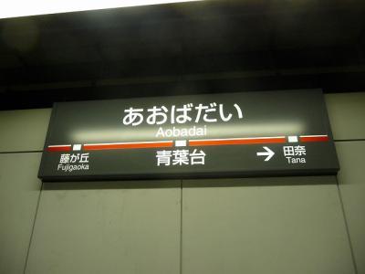 P1030702.jpg