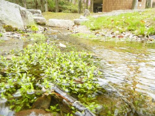 2012年陶芸の森