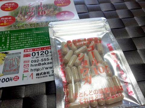 ゴール10(テン)ショウガ (2)