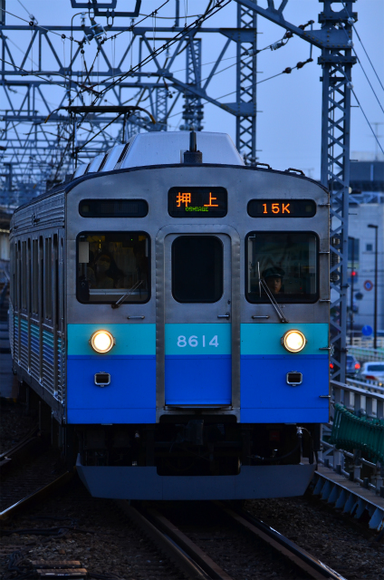 DSC_8381.jpg
