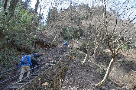 201203高尾山 (16)