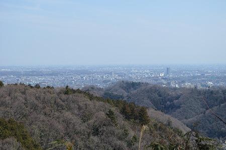 201203高尾山 (33)