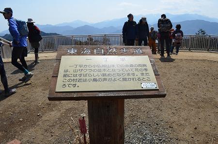 201203高尾山 (74)
