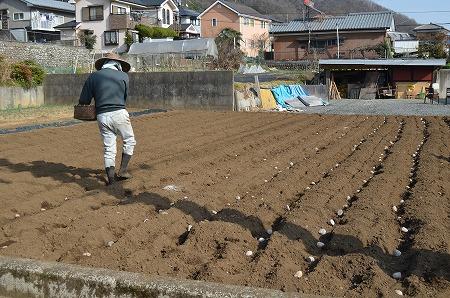 201203高尾山 (115)