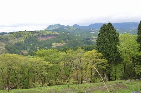 九州旅行_20120503_192