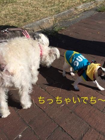 fc2blog_20140923210802435.jpg
