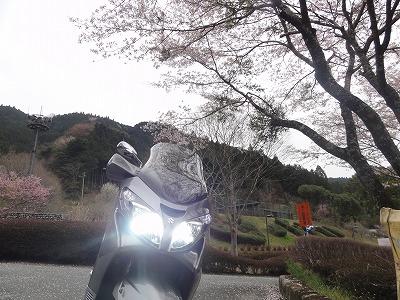 2012-04-13_14-20-30.jpg
