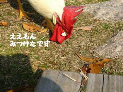 ni-142_201312022141526e2.jpg