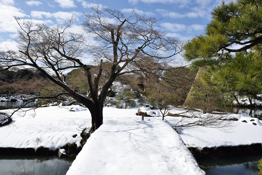 Tokyo Snow Scene~⑦