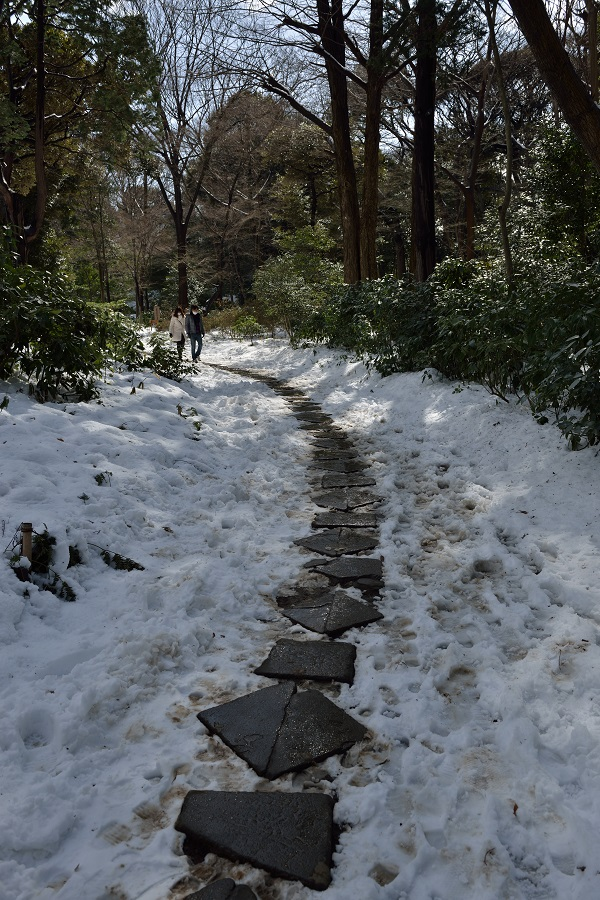 Tokyo Snow Scene~⑥雪の小径を抜けて