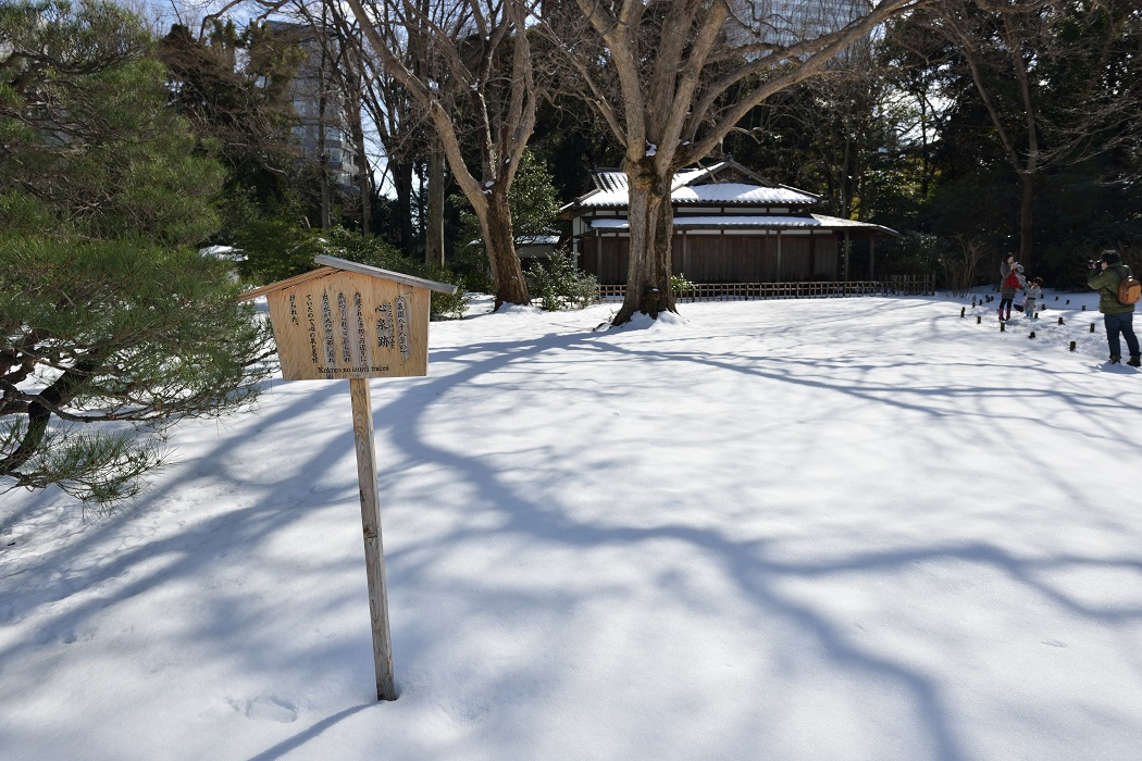 Tokyo Snow Scene~⑧六義園終章