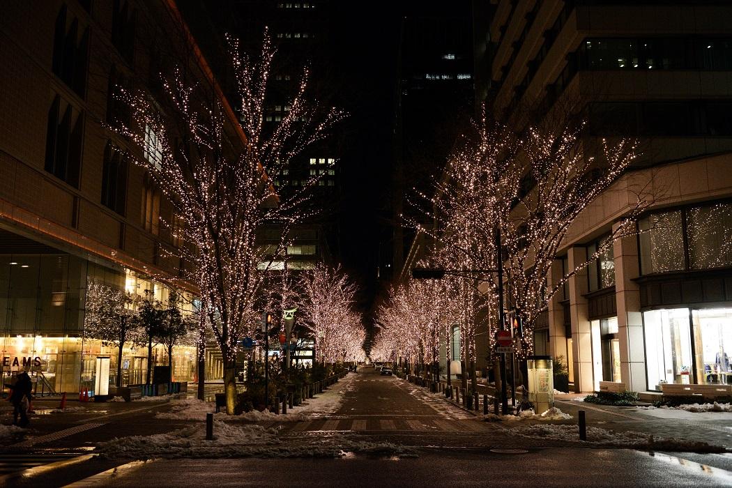 Tokyo Snow Scene~⑨Marunouchi